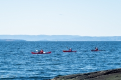 Three paddlers